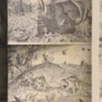 Collection of Pieter van der Heyden Art Below Stairs